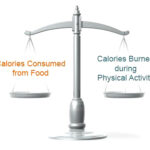 Body Fat: Daily Caloric Balance
