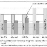 Maltodestrine e fruttosio: Ossidazione dei Carboidrati Ingeriti