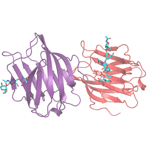 Example of three-dimensional structure of proteins